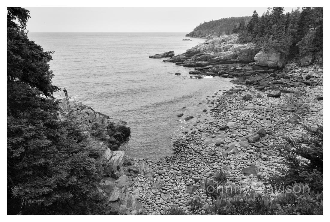 Coast, Acadia National Park, ME