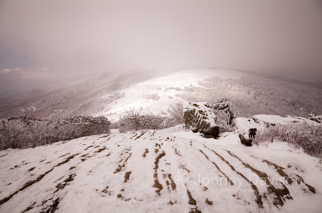Snow Cloud, Afternoon Light, From Jane Bald, Roan Mountain, Pisgah/Cherokee National Forest, NC/TN