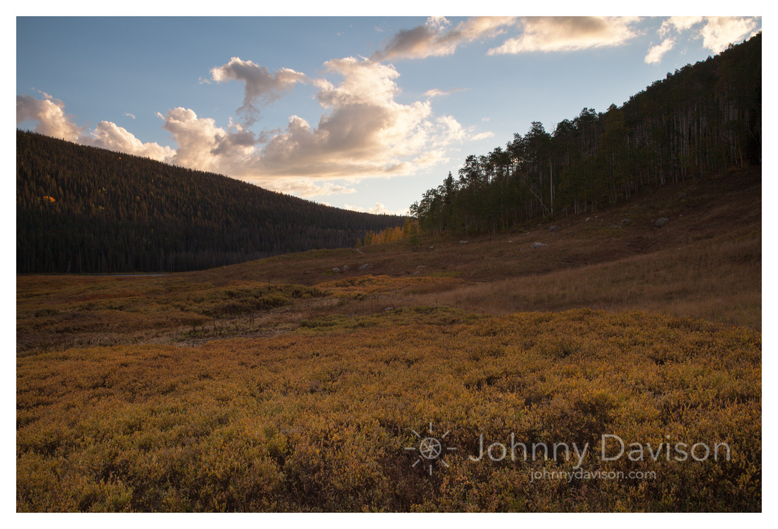 Meadow, Sunset, Eagles Nest Wilderness, White River National Forest, CO