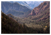 Oak Creek Canyon, Late Afternoon, Coconino National Forest, AZ