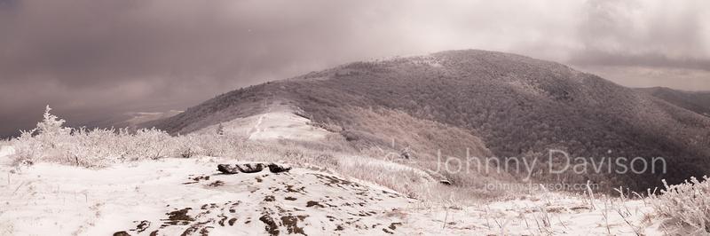 Grassy Ridge Bald, Afternoon, Roan Mountain, NC